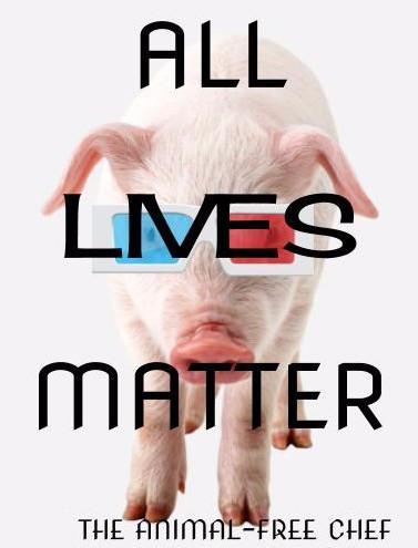 all-lives-matter-4