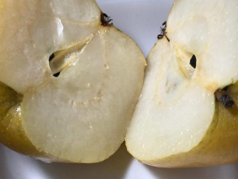 cropped-asian-pear-2.jpeg
