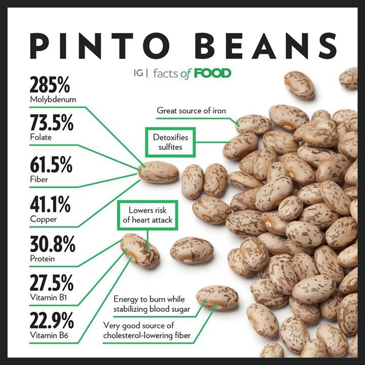 PIINTO BEAN GRAPHIC
