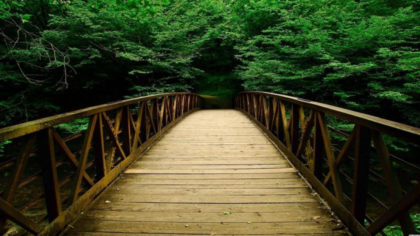 1124375-wooden-bridge.jpg
